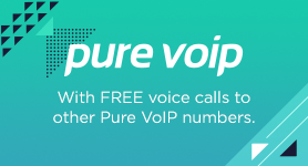 <strong>Want FREE VoIP calls?</strong>